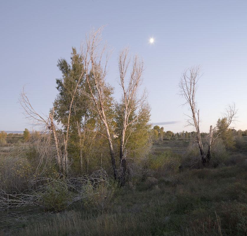moon_tetonriver